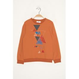 Trendyol Orange Boy Printed Sweatshirts